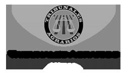 Tribunal Superior Agrario